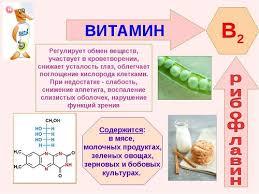 Витамин В рибофлавин содержание в продуктах питания и роль в  Витамин В2