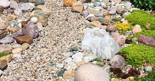 said in stone your rock garden guide