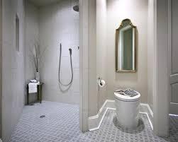 Ada Bathroom Design Ideas Custom Ideas