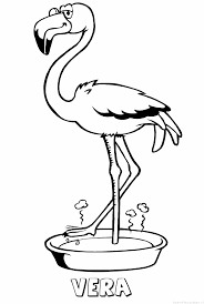 Vera Flamingo Naam Kleurplaat