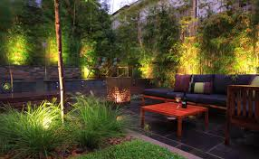 Home Interior Design Decorating Ideas Fireplace Ecosmart Eco Outdoor