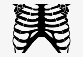 stencil rib cage cut diy skeleton shirt