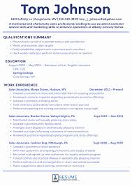 Project Manager Resume Summary Examples Executive Summary Example Resume Best Of Executive Summary Resume 53