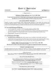 Resume Building Services Executive Resume Writing Combination Resume