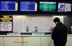 Тотализаторах букмекерских контор
