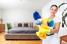 Download Get Rid Of Bed Bugs Diy Pics