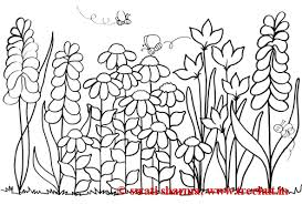 Small Picture Free Flower Garden Coloring Pages Flower garden coloring page for