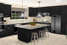 Most Popular Kitchen Designs Lovely On Inside Custom Design Software 12