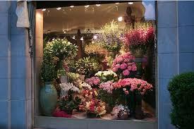 Risultati immagini per Novara negozi di fiori immagini