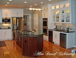 Kitchen Cabinets And Kitchen Remodelwwwallendavidcom To Go Charlotte C6