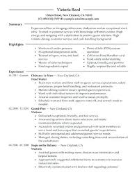 Server Job Duties For Resume Extraordinary Restaurant General Manager Job Description Resume Sample Restaurant