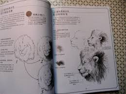 new tattoo book drawing realistic s book tattoo flash sketch reference lion tiger leopard in tattoo accesories from beauty health on