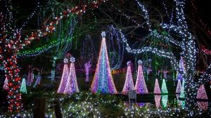 Columbus Lights Zoo Columbus Zoo Offers Free Admission To First Responders