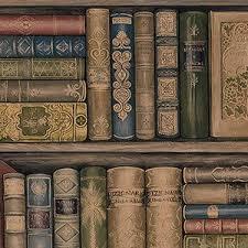 unique boutique retro vine book wallpaper old traditional library english pub ebay