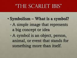 "the scarlet ibis by james hurst ""at times i was mean to doodle  the scarlet ibis symbolism what is a symbol symbolism what is a symbol"
