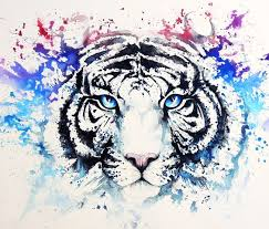 white tiger with blue eyes tattoo. Beautiful Eyes Throughout White Tiger With Blue Eyes Tattoo