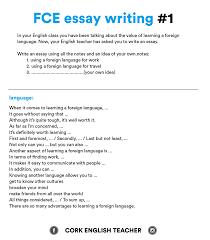 Write Essay Example Examples Writing Essays Fce Exam Essay Examples Yralaska 9