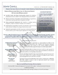 Ethics And Compliance Officer Sample Resume Enchanting COO Resume Sample Chief Operating Officer Resume Sample Executive