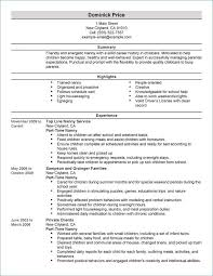 Resume Career Summary Magnificent Summary Of A Resume Best Of Resume Career Summary Examples From