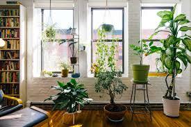 feng shui living room furniture. Photo: @allieleepson Feng Shui Living Room Furniture T