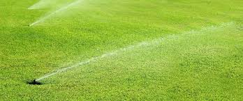 Image result for benefits of lawn sprinkler systems when selling your home