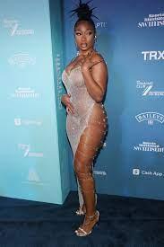 Megan Thee Stallion wears sheer dress ...