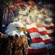 memorial day bald eagle fireworks