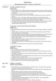 Process Analyst Sample Resume IT Process Analyst Resume Samples Velvet Jobs 8