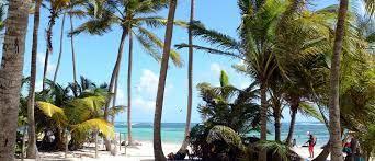 Vakantie in Martinique: de leukste ...