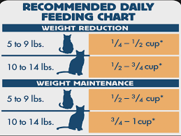 Blue Weight Control Dry Cat Food Chicken How Much Should
