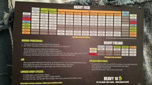 Heavy Sixteen Feeding Chart Keepn It Legal With Pink Kush 2 Lava Berry Kush 420