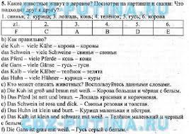 ГДЗ решебник по немецкому языку класс Бим Рыжова учебник 5