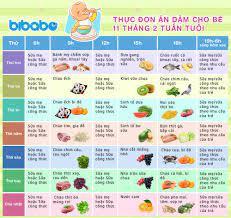 Thực đơn ăn dặm cho bé 11 tháng – Tuần 2 (Dành cho bé ăn dặm tích cực –  Ngày ăn 1-2 bữa) - bibabo.vn