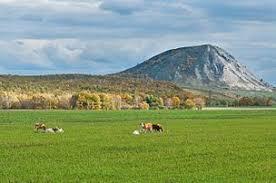 Башкортостан Википедия Шихан Тратау Одиночные холмы расположенные посреди степи являются уникальным для Башкортостана ландшафтом