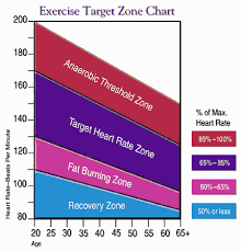 Ideal Heart Rate To Burn Fat Chart Pin On Cardio
