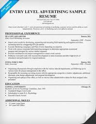 Office Resume Templates Nice Resume Examples For Entry Level