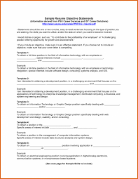 Independent It Consultant Resume Diplomatic Policy Sales Beauty