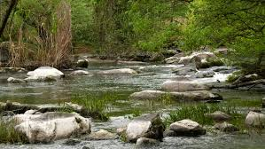 Wild river with rocks - 4K stock video clip