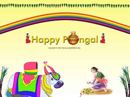 pongal pongal pongal wall paper pongal 1024x768 pongal
