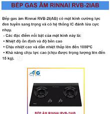 Nhập ELAPR21 giảm 10% tối đa 200k đơn từ 99k]Bếp gas âm Rinnai RVB-2i(AB) -  RVB-2IAB - Đầu đốt âm - tiết kiệm 30% gas - Alo Bếp Xinh
