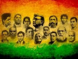 Image result for freedom fighters