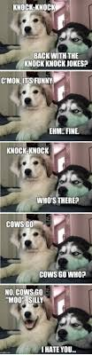 25+ Best Best Knock Knock Joke Ever Memes | Knock Jokes Memes, Good ...