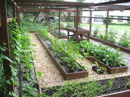 Small Picture Best School Garden Design Ideas Pictures Home Decorating Ideas