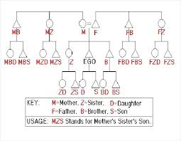 Kinship Diagram Maker How To Draw Kinship Diagrams The Human