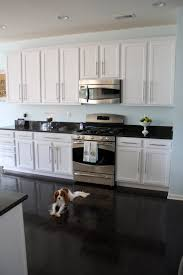 Antique Black Kitchen Cabinets Unique Inspiration Ideas