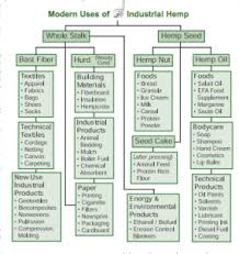 Hemp Uses Chart Industrial Hemp A Win Win For The Economy And The Environment