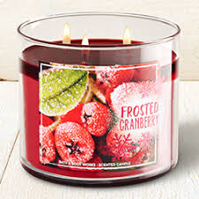 Frosted Cranberry 3 Wick Candle Home Fragrance 1037181 Bath