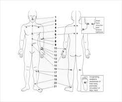 Whole Body Chart Reflexology Chart Templates 9 Free Pdf Documents Download