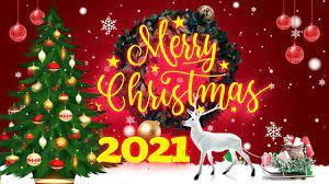 LK Hai Mùa Noel - Nhạc Giáng Sinh 2021 Hải Ngoại Hay Nhất - Nhạc Noel Xư...