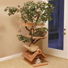 natural cat treehouse